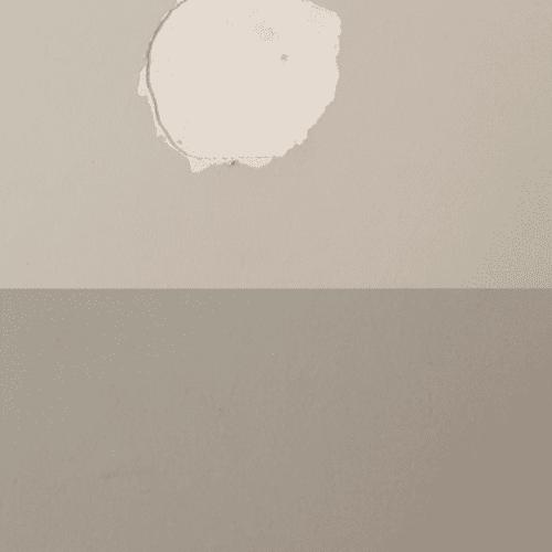 plasterscratch-500x500